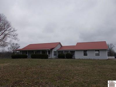 Graves County Single Family Home For Sale: 370 Housman Road