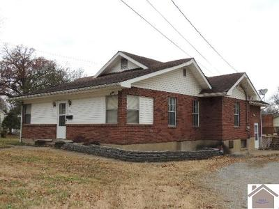Mayfield Single Family Home For Sale: 803 Backusburg Road