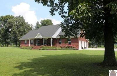Calloway County, Marshall County Single Family Home For Sale: 3752 St Rt 121 N