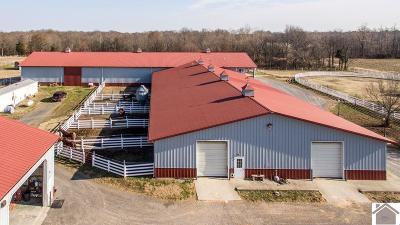 Graves County Farm For Sale: 480 Housman Road