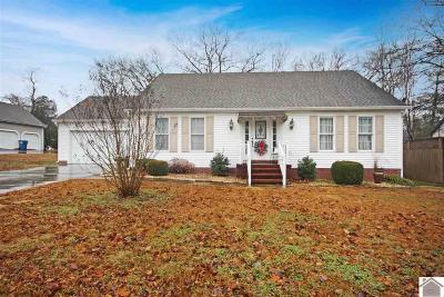 Murray Single Family Home For Sale: 1602 Tabard Drive