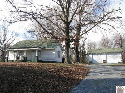 Benton Single Family Home For Sale: 2253 Briensburg - Tatumsville Road