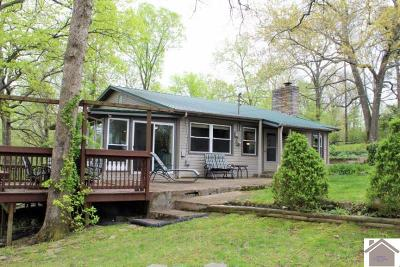 Calloway County, Marshall County Single Family Home For Sale: 1610 Shoemaker Rd