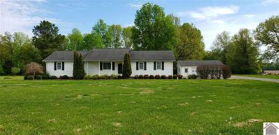 Calloway County Single Family Home For Sale: 5137 St Rt 94 W