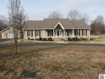 Marshall County Single Family Home Contract Recd - See Rmrks: 135 Boatright Drive