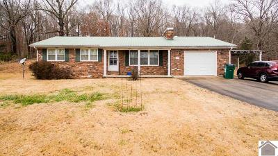 Lyon County Single Family Home For Sale: 149 Marshall Road