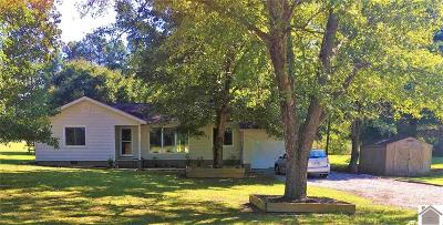 McCracken County Single Family Home For Sale: 9160 Moore Rd