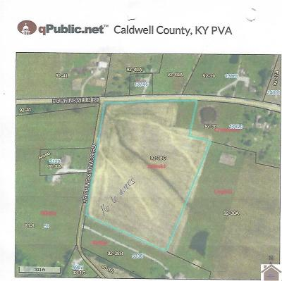 Caldwell County Residential Lots & Land For Sale: Highway 91s