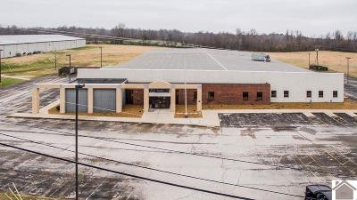 Ballard County Commercial For Sale: 761 Veterans Avenue