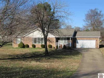 Paducah Single Family Home For Sale: 965 Mari Dr
