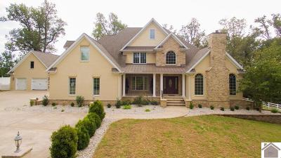McCracken County Single Family Home For Sale: 8930 Childress Road