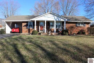 Murray Single Family Home For Sale: 1606 Parklane Drive