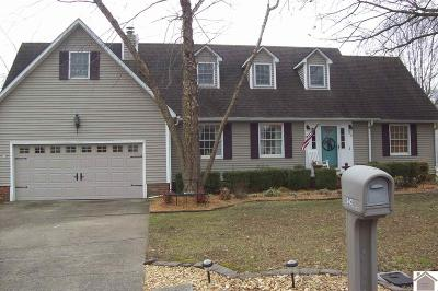 Mayfield Single Family Home For Sale: 342 Golf Cart Dr