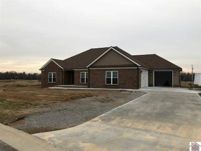 Paducah Single Family Home For Sale: 1535 Falcons Ridge Blvd