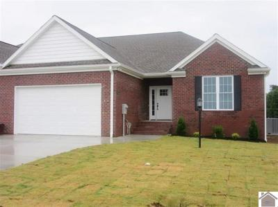 McCracken County Condo/Townhouse For Sale: 119 Twinson