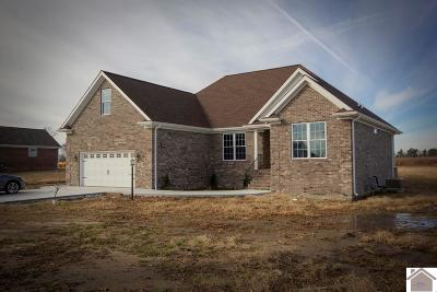 McCracken County Single Family Home For Sale: 3055 Steele Road