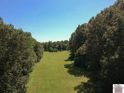Paducah Residential Lots & Land For Sale: 1818 Kreb Station Road