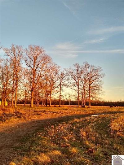 Marshall County Farm For Sale: 740 Walker Harris Road