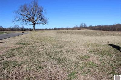 Calloway County Residential Lots & Land For Sale: 161 Legacy Lane Lot #140