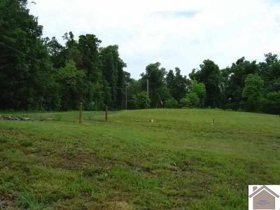 Gilbertsville Residential Lots & Land For Sale: Sleddcreek Rd & Hummingbird Ln