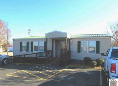 Marshall County Commercial For Sale: 2730 Us Highway 641