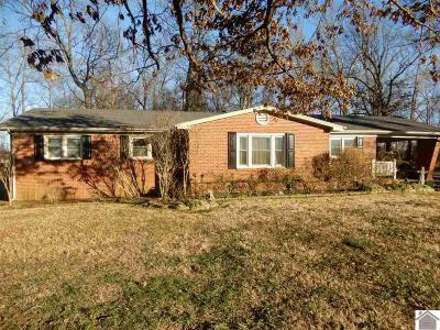 Calloway County Single Family Home For Sale: 432 Kirksey Rd.