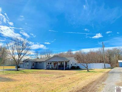 Calloway County Single Family Home For Sale: 2267 Rob Mason