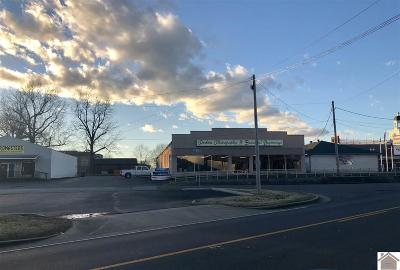 Graves County Commercial For Sale: 703 S 6th Street