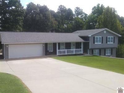 Paducah Single Family Home For Sale: 5940 Warrendale Drive