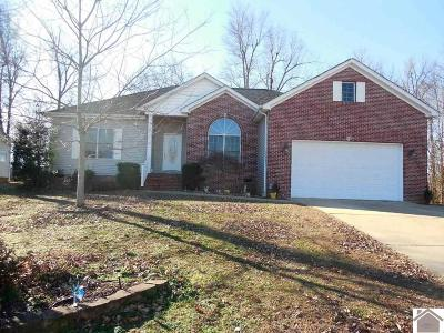 McCracken County Single Family Home For Sale: 8310 Tarpan Trail