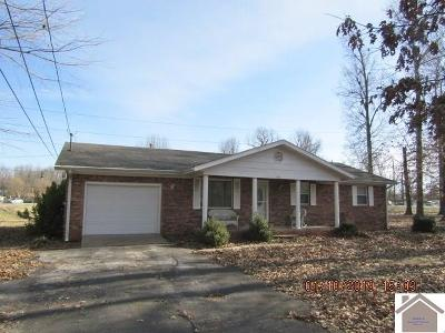 Paducah Single Family Home For Sale: 304 Herman Avenue