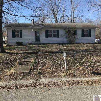 Marshall County Single Family Home For Sale: 40 Black Knight Court