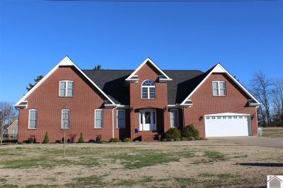 Calloway County, Marshall County Single Family Home For Sale: 260 North Drive