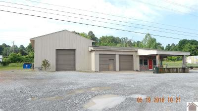 Marshall County Commercial For Sale: 4029 Us Hwy 62