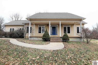 Ballard County Single Family Home For Sale: 9400 Wickliffe Road