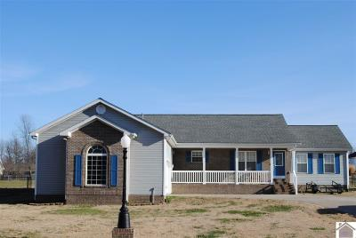 McCracken County Single Family Home For Sale: 4260 Roettger Drive