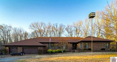 Calloway County, Marshall County Single Family Home For Sale: 7 Pleasant View Lane