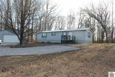 Lyon County Manufactured Home For Sale: 183 State Route 274