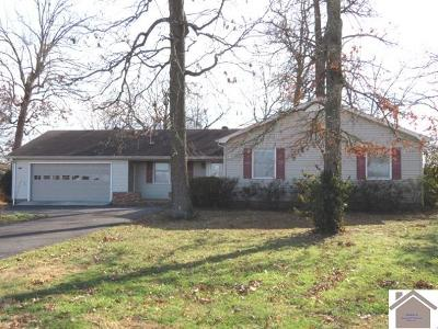 Calloway County Single Family Home For Sale: 2125 State Route 94 West