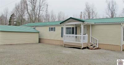 Lyon County Manufactured Home For Sale: 132 Saratoga Hts