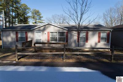 Manufactured Home For Sale: 120 Morris Lane