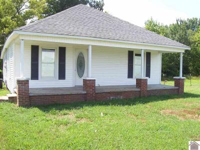 McCracken County Single Family Home For Sale: 4520 Hardmoney Road