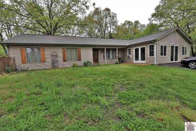 Marshall County Single Family Home For Sale: 344 Cactus Drive