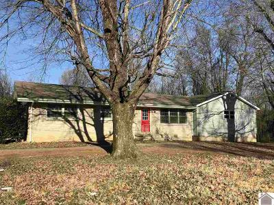 McCracken County Single Family Home For Sale: 8925 Moore Road