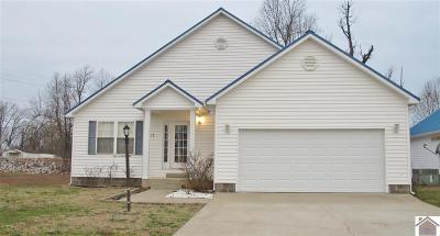 Livingston County, Lyon County, Trigg County Single Family Home For Sale: 128 Lighthouse Cay