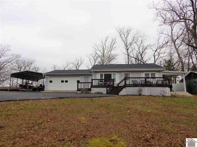 Gilbertsville KY Single Family Home For Sale: $112,900