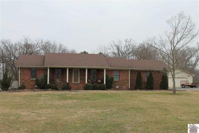 Cadiz KY Single Family Home For Sale: $247,000