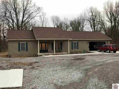 McCracken County Single Family Home For Sale: 12705 Rosie Lane