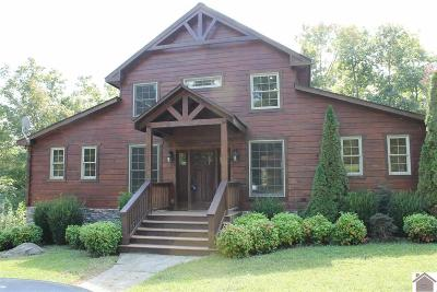 Eddyville KY Single Family Home For Sale: $395,000