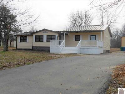 McCracken County Single Family Home For Sale: 12050 Ogden Landing Road